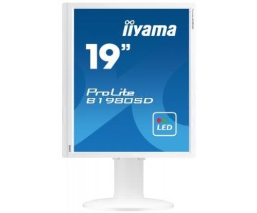 iiyama 19'' B1980SD-W1 DVI-D/PIVOT/GŁOŚNIKI