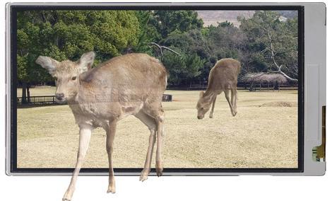 3D bez okularów - nowe ekrany od Sharp-a