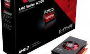 Sapphire FirePro W2100 2GB DDR3 (128 bit) 2x DP, BOX (100-505980)Profesjonalna karta graficzna AMD FirePro™ W2100Profesjonalna karta graficzna AMD FirePro™ W2100