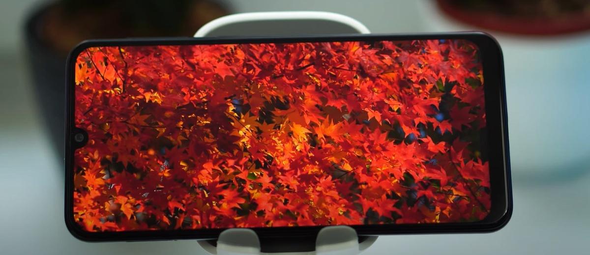 Samsung Galaxy M21 reprodukuje żywe, przyjemne barwy