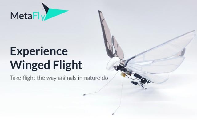 MetaFly RC to owad na pilota