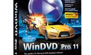 Corel WinDVD Pro 11 ML/PL Mini-DVD Box WDPR11MLMB