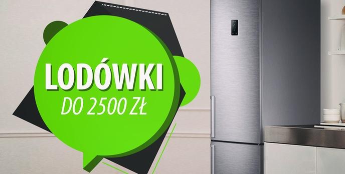 Ekskluzywne lodówki do 2500 zł |TOP 10|