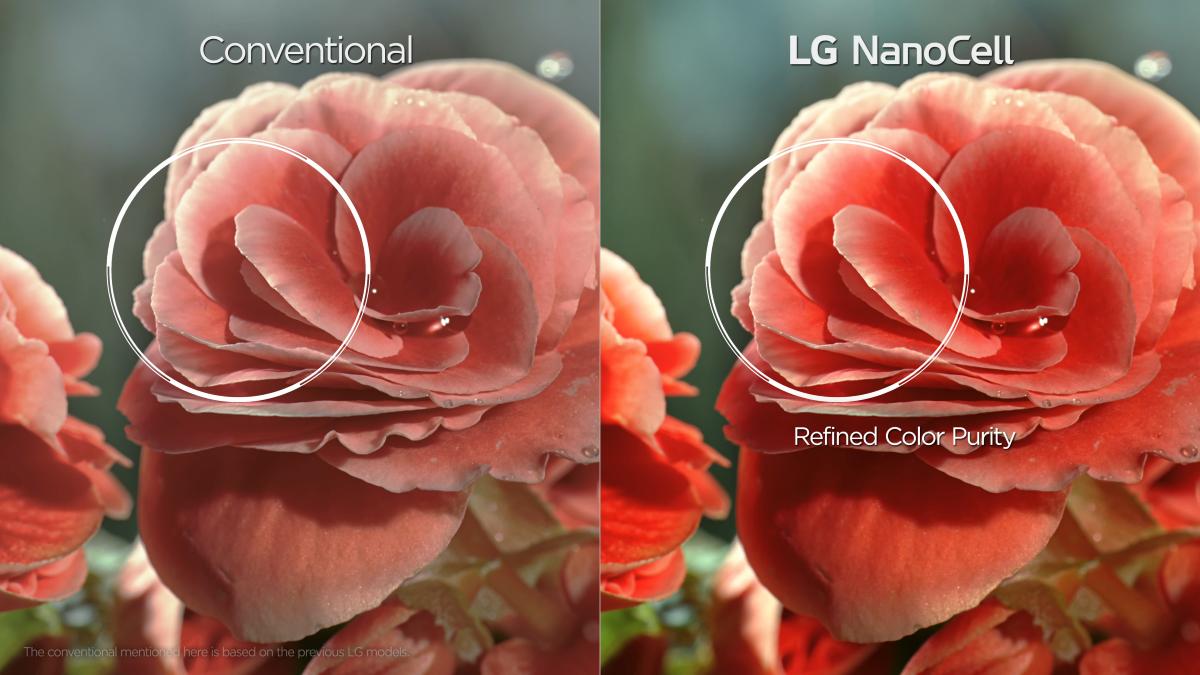 Pokazówka NanoCell od LG