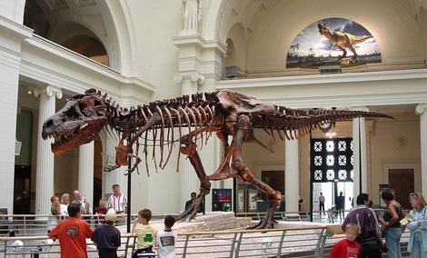 Tyranozaur W Ogródku? Jego Replika Jest Na Sprzedaż!