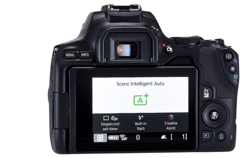 Canon EOS 250D posiada ekran dotykowy odchylany